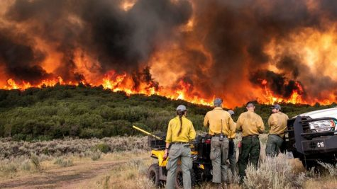Image of Firefighters at Pine Gulch