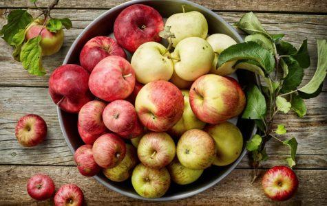 GMOs, Friend or Foes pt.1